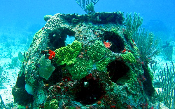 Eternal Reefs burial at sea reef ball ok